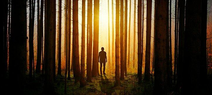 木漏れ日に立つ男性
